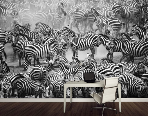 Image Is Loading Fleece Wall Mural Zebra Drove II Wallpaper Fleece