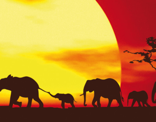 Photo wall mural african caravan 400x280 wallpaper wall for African wall mural