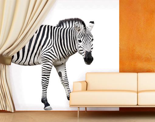 Vlies fototapete scheues zebra tapete steppenzebra pferd for Zebra tapete