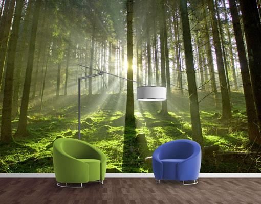 vlies fototapete tapete spring fairytale fr hling wald foto tapeten vliestapete. Black Bedroom Furniture Sets. Home Design Ideas