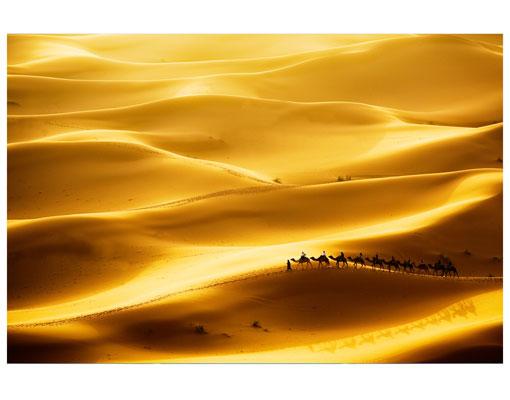 Tapete golden dunes foto tapeten vliestapete afrika wüste sand