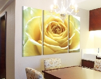 LeinwandBild Lovely Yellow Rose Triptychon II