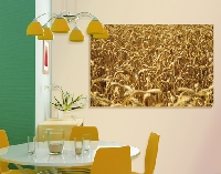 Hartschaum Bild Golden Wheat
