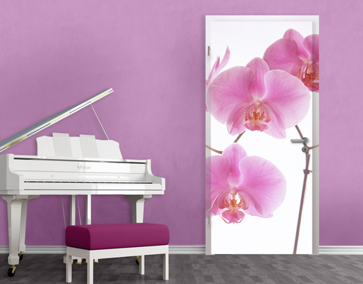 fototapete t r selbstklebend liebliche orchideen foto tapeten blumen sch nheit ebay. Black Bedroom Furniture Sets. Home Design Ideas