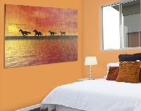 Alu Dibond Butlerfinish Bild Horses In Sunset