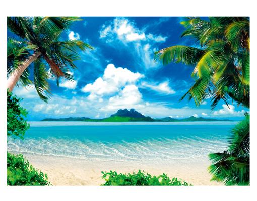 fototapete papier island of dreams 400x280cm paradies karibik strand ozean palmen. Black Bedroom Furniture Sets. Home Design Ideas