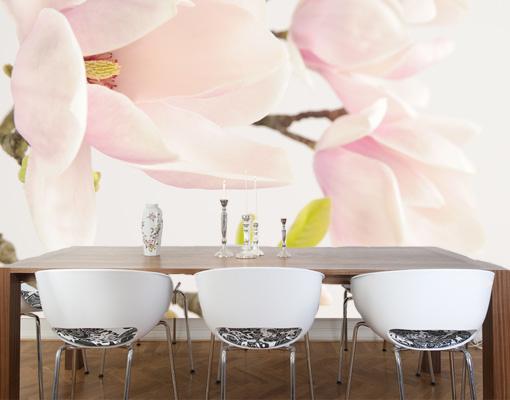 fototapete royal magnolia tapete magnolie blumen bl ten. Black Bedroom Furniture Sets. Home Design Ideas