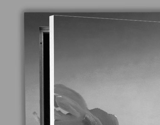 Details zu fototapete tür selbstklebend kuss eines goldfisches ii