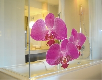 FensterSticker No.175 Orchidee Pink