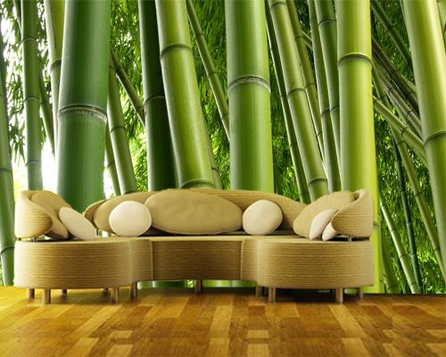 fototapete bamboo tree no 2 tapete pflanzen bambus bl tter dschungel gr n ebay. Black Bedroom Furniture Sets. Home Design Ideas