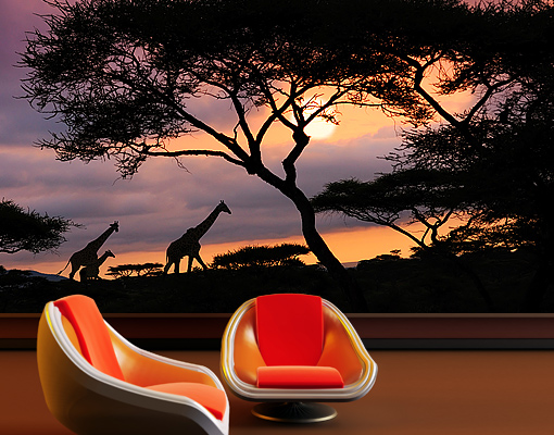 Photo wall mural african safari 400x280 wallpaper wall art for African sunset wall mural