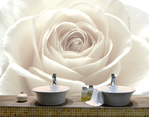 vlies fototapete pretty white rose tapete blume pflanze romantik weiss ebay. Black Bedroom Furniture Sets. Home Design Ideas