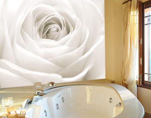 Photo Wall Mural The White Rose 400x280 Wall Decor Wallpaper Wall Art Roses Love Ebay