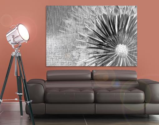 alu dibond butlerfinish bild pusteblume schwarz wei bilder druck blumen ebay. Black Bedroom Furniture Sets. Home Design Ideas