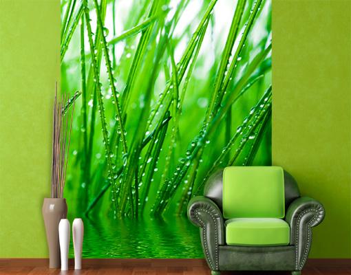 fototapete morgentau tapete pflanzen tropfen tau bl tter gr n. Black Bedroom Furniture Sets. Home Design Ideas