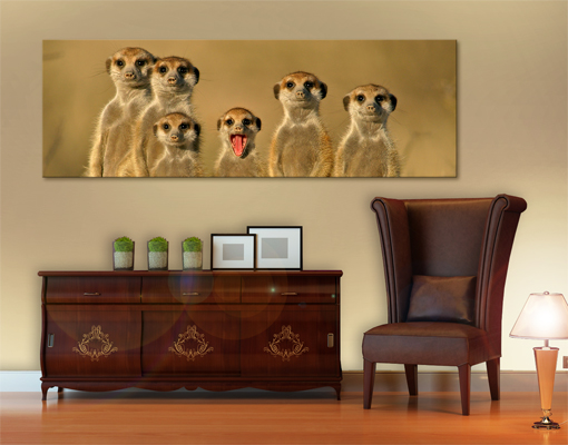 leinwand bild bilder erdmaennchen familie 120x40 panorama afrika safari tiere ebay. Black Bedroom Furniture Sets. Home Design Ideas