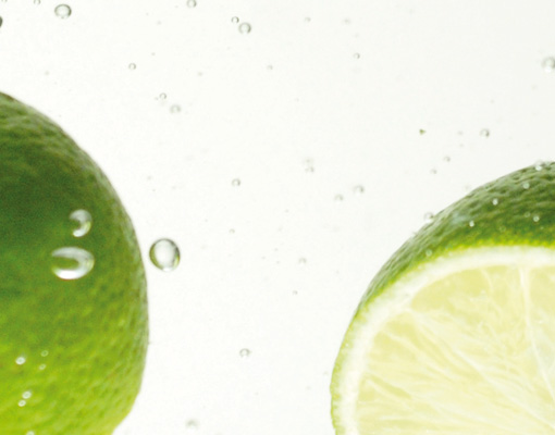 Photo wall mural lime swim 400x280 kitchen fruits for Lime green kitchen wallpaper