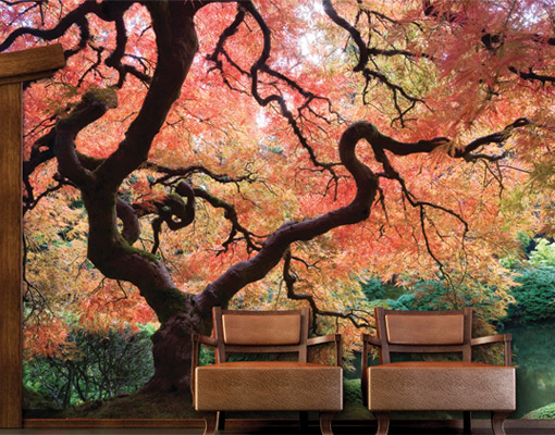 Photo wall mural japanese garden 400x280 wallpaper wall for Asian wallpaper mural