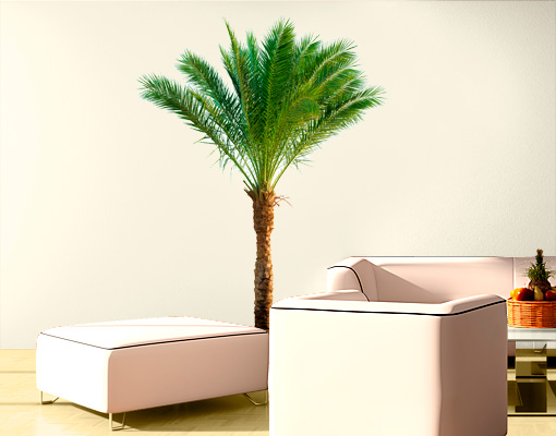 wandtattoo palme v 68x90 wandsticker sommer palmen strand urlaub b ume ebay. Black Bedroom Furniture Sets. Home Design Ideas