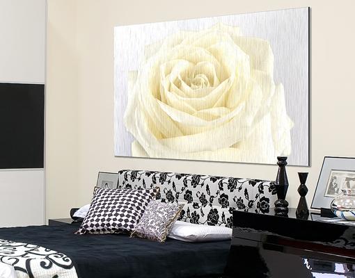 alu dibond butlerfinish bild la crema bilder druck blumen pflanzen natur wiese ebay. Black Bedroom Furniture Sets. Home Design Ideas