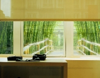 Fensterbild Bamboo way