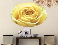 LeinwandBild Oval Lovely Yellow Rose