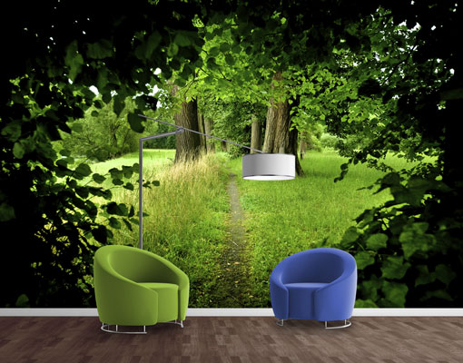 vlies fototapete tapete verborgene lichtung park b ume. Black Bedroom Furniture Sets. Home Design Ideas