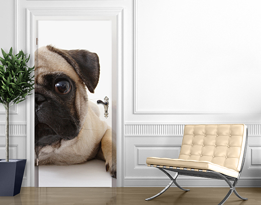 Image Is Loading Door Wall Mural Pug Wallpaper Art