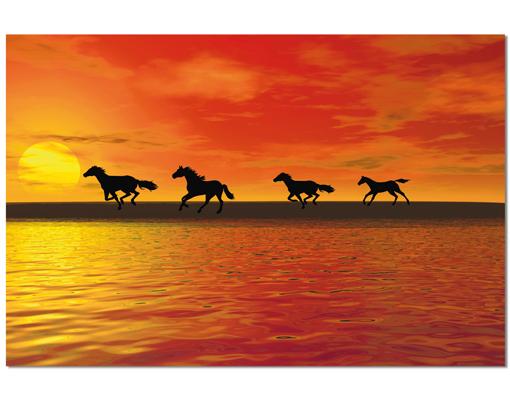 Alu Dibond Butlerfinish Bild Horses In Sunset Tier Pferd