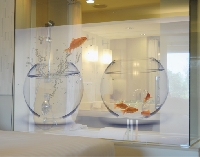 Fensterbild Flying Goldfish