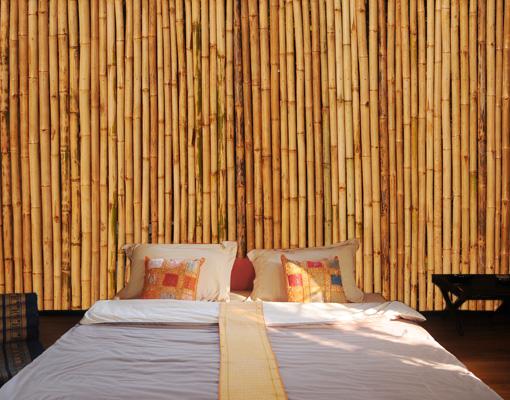 vlies fototapete golden bamboo tapete pflanze baum bambus holz braun ebay. Black Bedroom Furniture Sets. Home Design Ideas