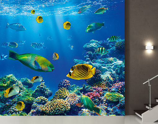 photo wall mural underwater world 300x280 wallpaper wall