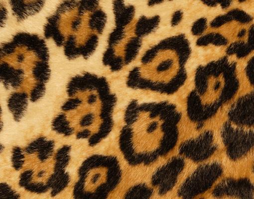 Leinwandbild Jaguar Skin Leoparden Fell Tier Gepard Muster