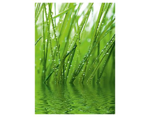 Fototapete fototapeten tapete tapeten freshness 200x280 gras wasser natur motiv - Fliesenaufkleber gras ...