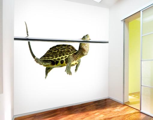 fototapete wasserschildkr te ii tapete schildkr te gr n. Black Bedroom Furniture Sets. Home Design Ideas