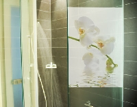 Fensterbild White Orchid Waters