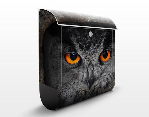 design briefkasten wachende eule 39x46x13 briefk sten. Black Bedroom Furniture Sets. Home Design Ideas